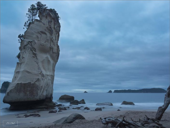 Cathedral Cove matin