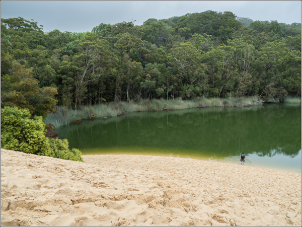 Fraser Island lac Wabby Vincent